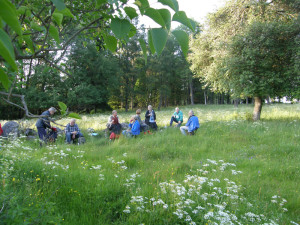 Fikastund i gröngräset i Ollestad